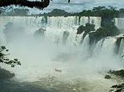 Iguazu Falls Much Water...