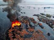 Japan's Impact Awareness Mortal Existence