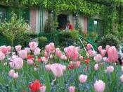 Flowering Calendar Claude Monet's Garden