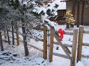 Colorado Christmas Celebration