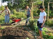 Sharing Backyards Wasatch Community Gardens