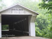 Indiana Covered Bridges: Cutler,
