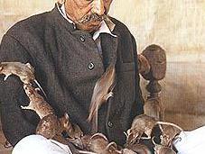 Altruism Religionless Rats