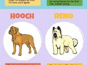 Infographic: Dogs You'd Recognize Film