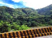 City Pines: Baguio