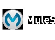 MULE Create Directory Exist