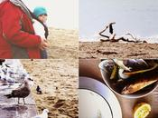 Walk Seaside Fresh Mussels Vegetables Soup ////