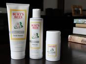 Skincare Currently: Burt's Bees Daisy White