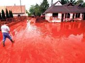 When Flowed River Danube ...'Ajka Alumina Sludge Spill'