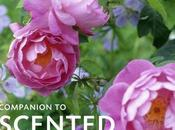 Companion Scented Plants Book Review Give Away