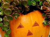 Best Designs Pumpkin Planters