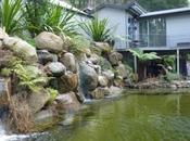 Phillip Johnson's Dandenong Garden