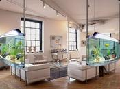 Fish Tank Decoration Ideas Kids