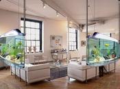 Fish Tank Decoration Ideas Kids