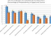 Reforming Entrepreneurship Ecosystem: Study Barriers Growth Tunisia Egypt