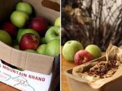 Spiced Apple Bread Tale Urban Farmer (Invest Farm)