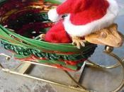 Weird Exotic Animals Wearing Santa Hats