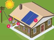 Should Choose Solar Power Your Commercial Establishment?