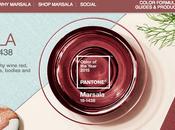 Pantone Color Year 2015: MARSALA