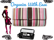 Tips Organize Your Purse Year