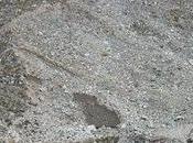 Mandakini River Origin