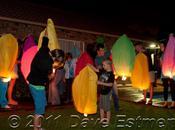 Year Lanterns Lighting