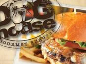Lunch Review Doghouse Gourmet Burgers, Voorhees,
