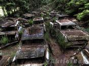 Chatillon Cemetery Traffic Cars Since Many Decades. Story Will Raise Questions.