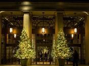 Christmas Conservatory Night Longwood Gardens 2014