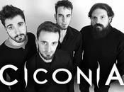 CICONIA Moon Sessions Album