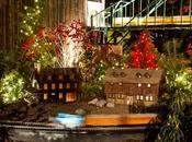 Amazing Outdoor Lights Christmas Longwood Gardens 2014