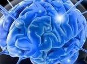 Five Best Natural Brain Boosting Supplements