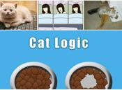 These Hilarious Logic Will Reveal What Your Cat's Been