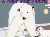 BOARD BOOK: Polar Bear's World