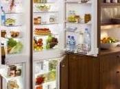 Choosing Right Fridge Freezer Your Home