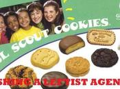 Reasons Shouldn't Those Girl Scouts Cookies