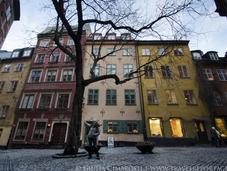 What Rocked Socks Stockholm