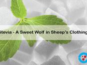 Nutrition: Stevia Whispering Sweet Nothings