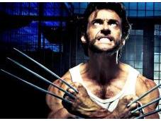 """When Next """"Wolverine"""" Movie?"""