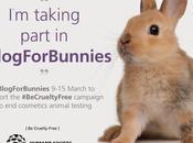 #BeCrueltyFree Week #BlogForBunnies Cruelty Free Story