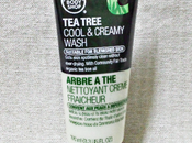 Body Shop Tree Cool Creamy Wash Review