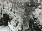 Partnachklamm: Winter Jewel Garmisch-Partenkirchen