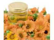 Infusion Recipes Heal Pamper Your Skin Make Infused Oils Home