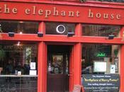 Elephant House: U.K., U.S.A., France