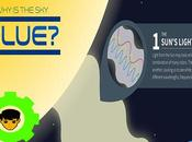 Blue (Infographic)