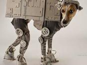 Photos: Fourth with Star Wars Dogs!