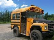 Crazy Unusual Yellow School Buses