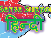AdSense Supports Websites Hindi Language