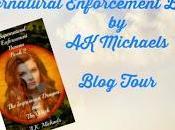 Supernatural Enforcement Bureau Series A.K. Michaels