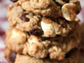 Vegan Chocolate Chip Marshmallow Oatmeal Cookies